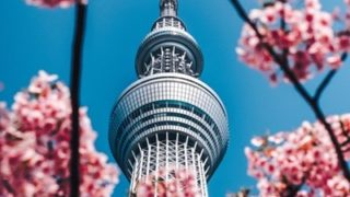 今田美桜の経歴は?福岡で一番かわいい女の子が将来はアジア進出?