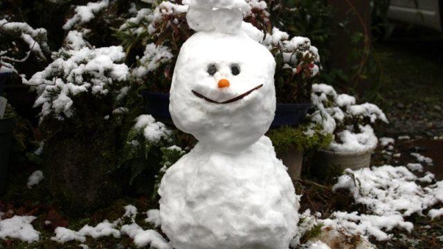 松たか子アナ雪2の歌が海外で評価が高い理由は?歌唱力がすごい?